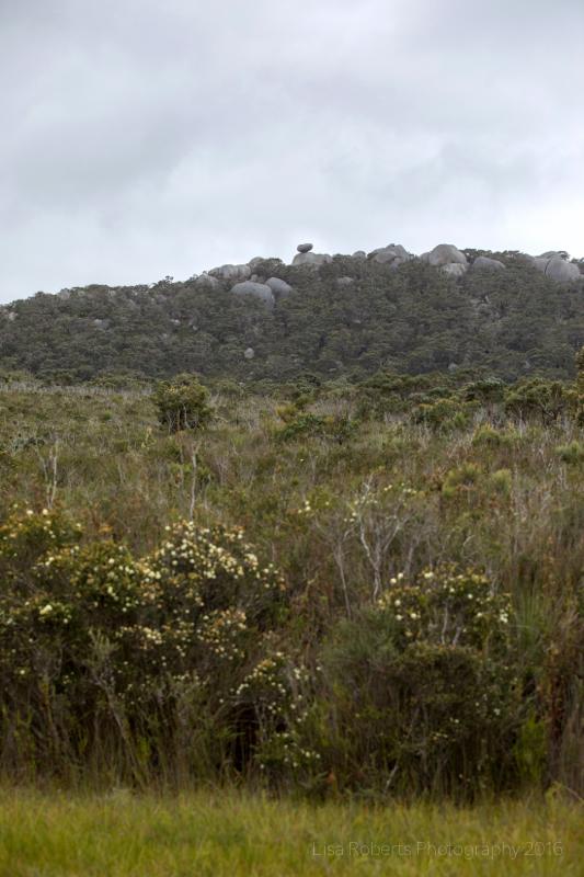 Wilson's Promontary, Victoria, Australia