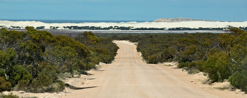 Road to Fowlers Bay, South Australia