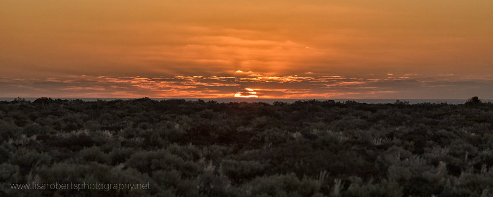 Desert Sunset, The Nullabor, South Australia