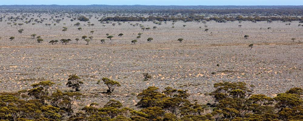 Madura, Western Australia