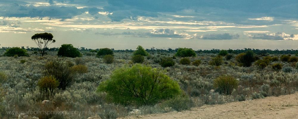 Desert view, Western Australia