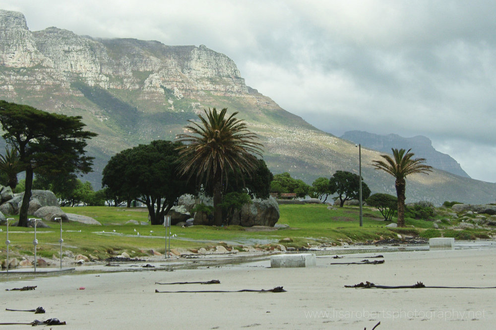 Beach, Cape Town, Western Cape, South Africa