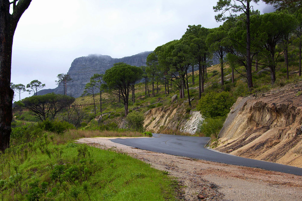 Road around Table Mountain, Cape Town, Western Cape, South Africa