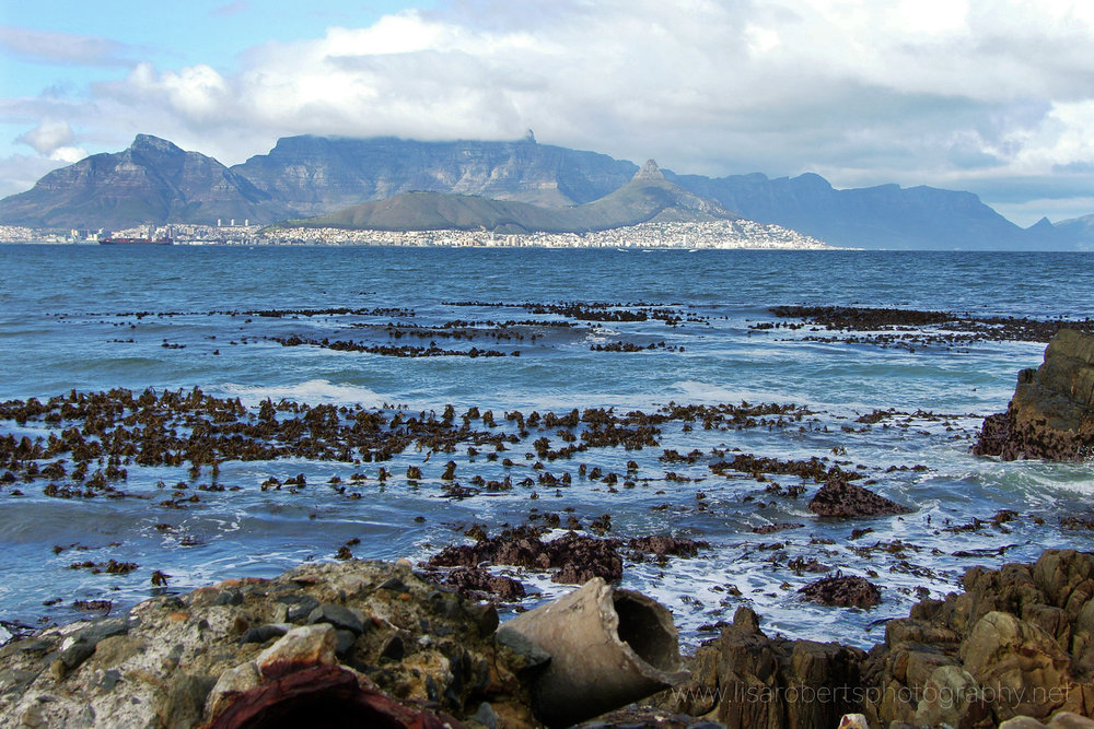 View of Table Mountain from Robben Island, Western cape, South Africa