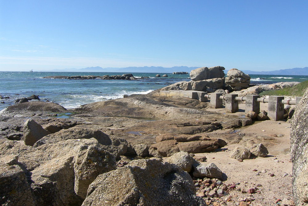 Boulders Beach, Simons Town, Cape Peninsula, Western Cape, South Africa
