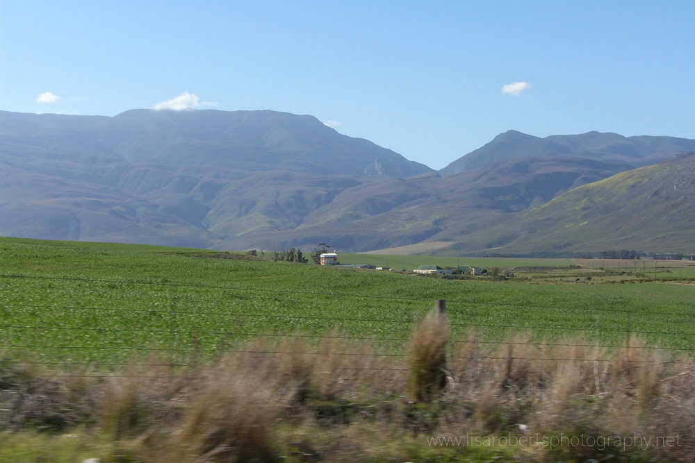 South African countryside, Western Cape, South Africa