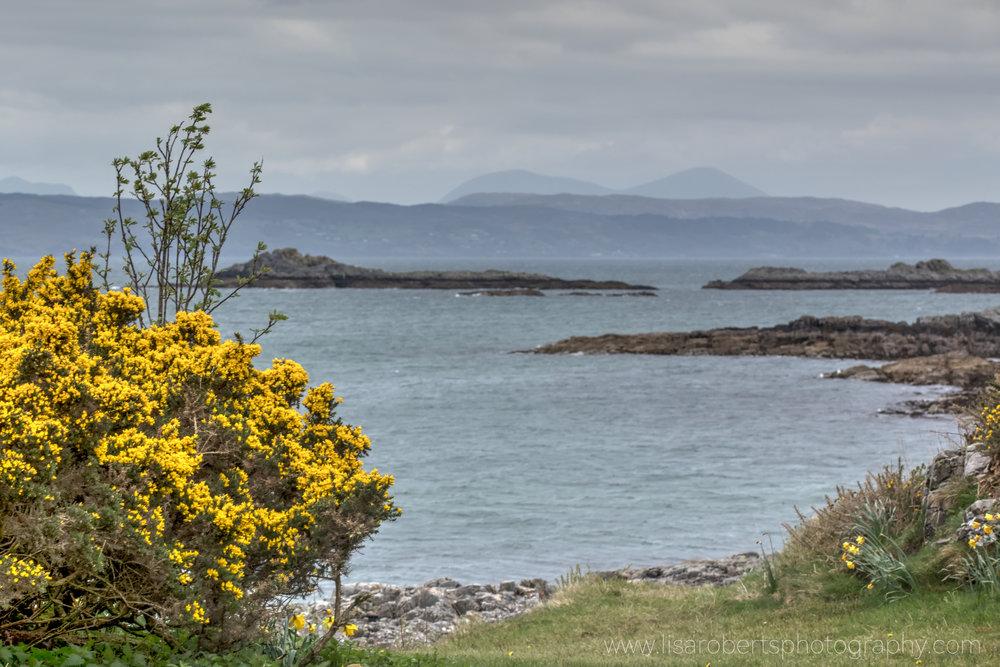 Scotland 187.jpg