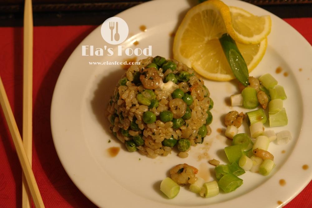 shrimps 3.JPG