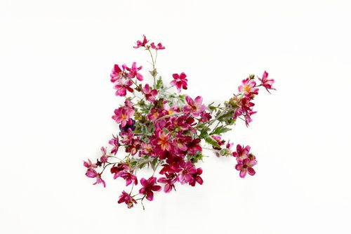 Small deep pink flowers hook props small deep pink flowers mightylinksfo