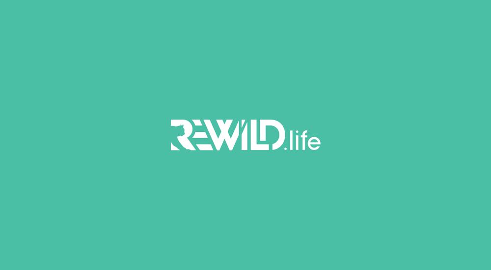 rewild-land.png