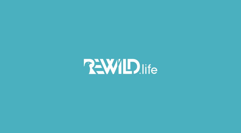 rewild-air.png