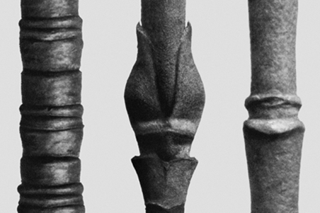 KARL BLOSSFELDT |  Art Forms in Nature  24 April - 18 May, 2015