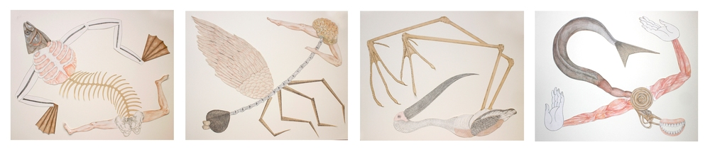 "Shrimanti Saha | Creatures (Set of 4) | Graphite,pencil colour, water colour, collage on paper | 20"" x 25"" (Each) 