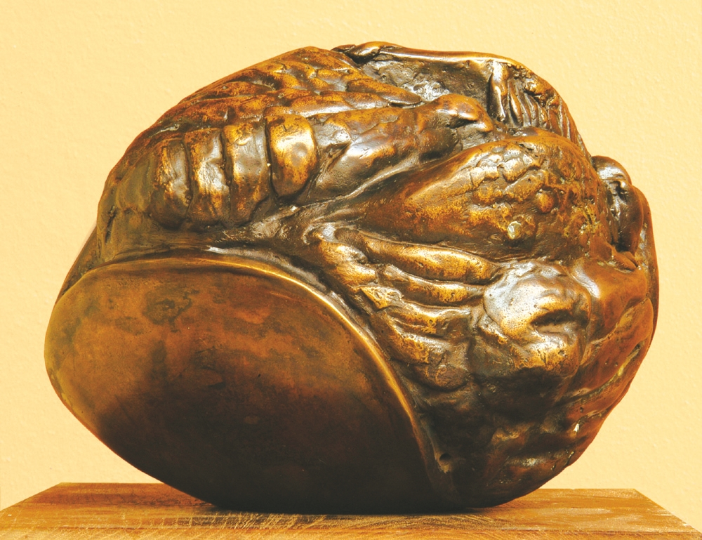 "Embryonic Form III | Bronze sculpture | 6.5"" x 10 x 8"" 