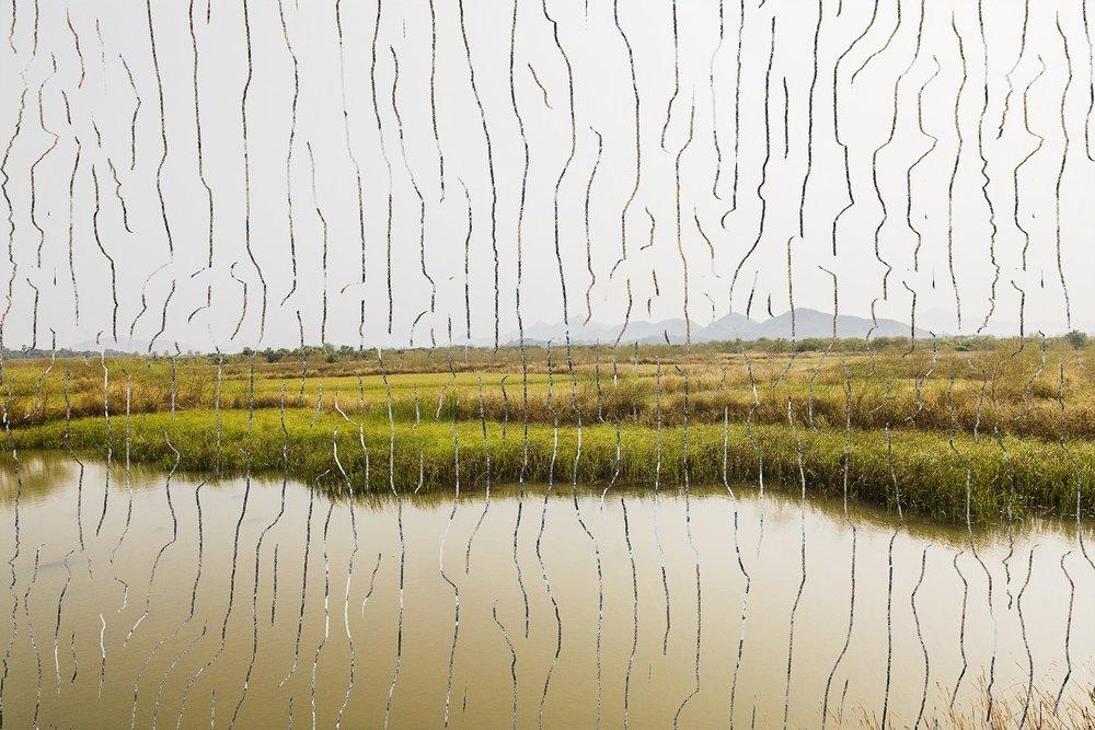 Vaitarni Crossing - I | Archival pigment print (Diasec) | 30'' x 45'' | 2017
