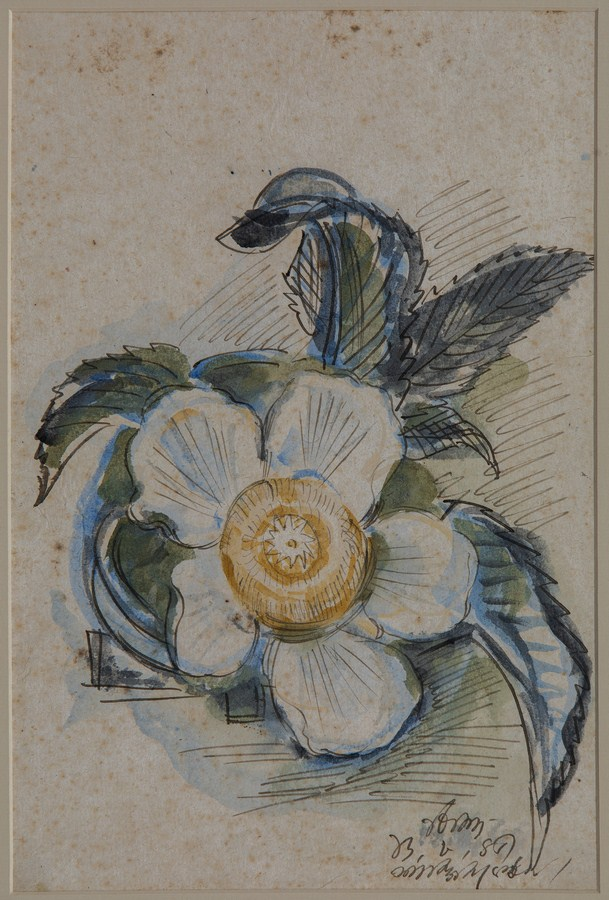 "Chalta – Flower | Watercolour on paper | 11"" x 15"" 