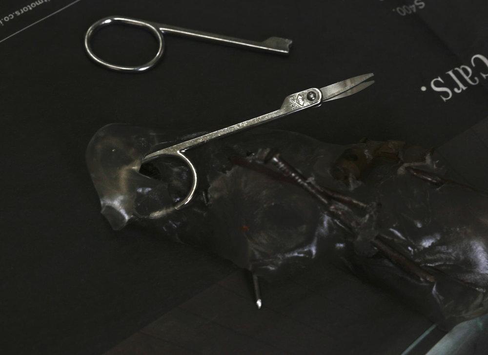 "Untitled | Archival print on corning gorilla glass | 8"" x 11"""
