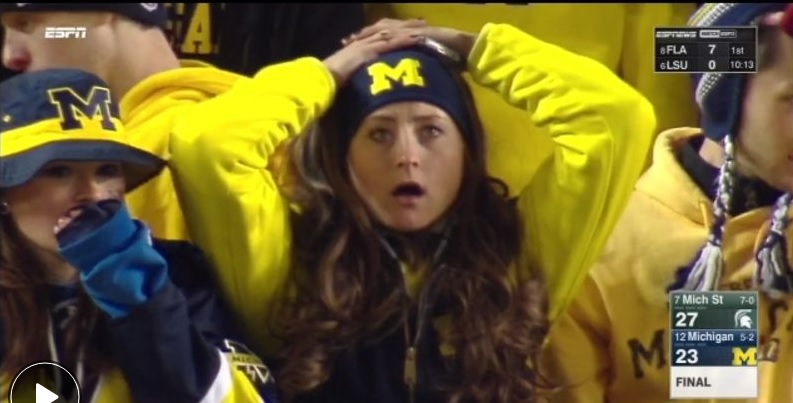 Michigan-Surrender-Cobra.jpg