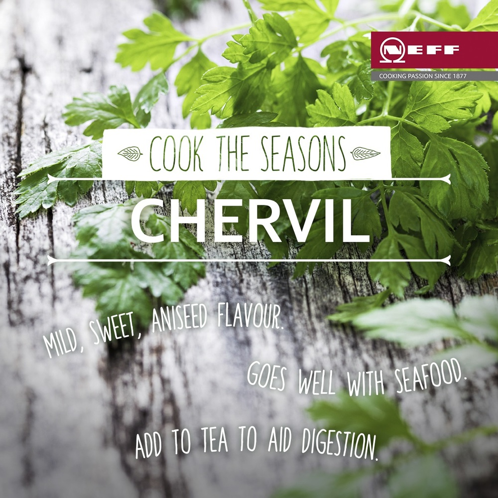 With a growing season from May and September, chervil is starting to make an appearance.  Why not try sprinkling it over your steamed baby vegetables or add it to milder chicken and seafood dishes to pack more of a punch.