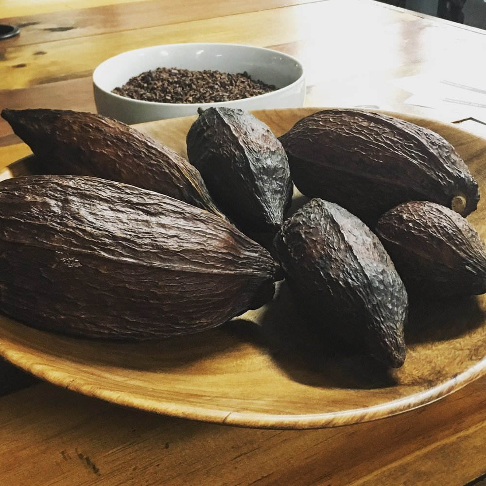 The cacao pods pictured here hold the seeds that transform into delicious chocolate. This photo was taken at the Himalayan Institute, home of Moka chocolate.
