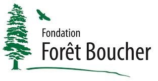 fondation foret boucher site internet.jpg