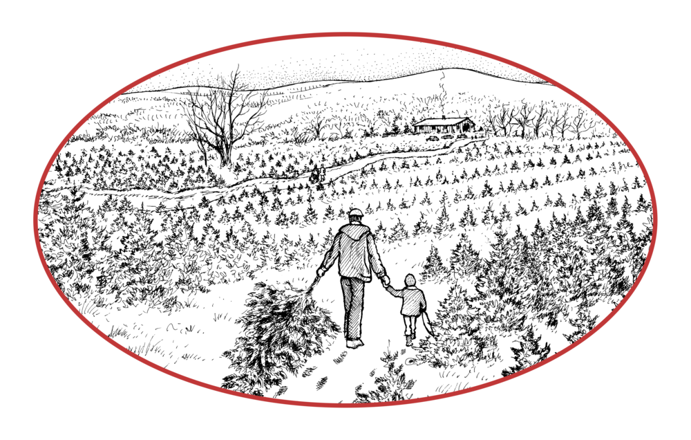 All Rights Reserved Piper Mountain Christmas Tree Farm & Country Spice 2015 - Piper Mountain
