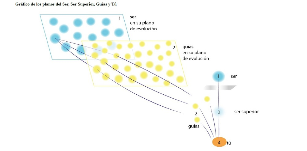 grafico guias.jpg