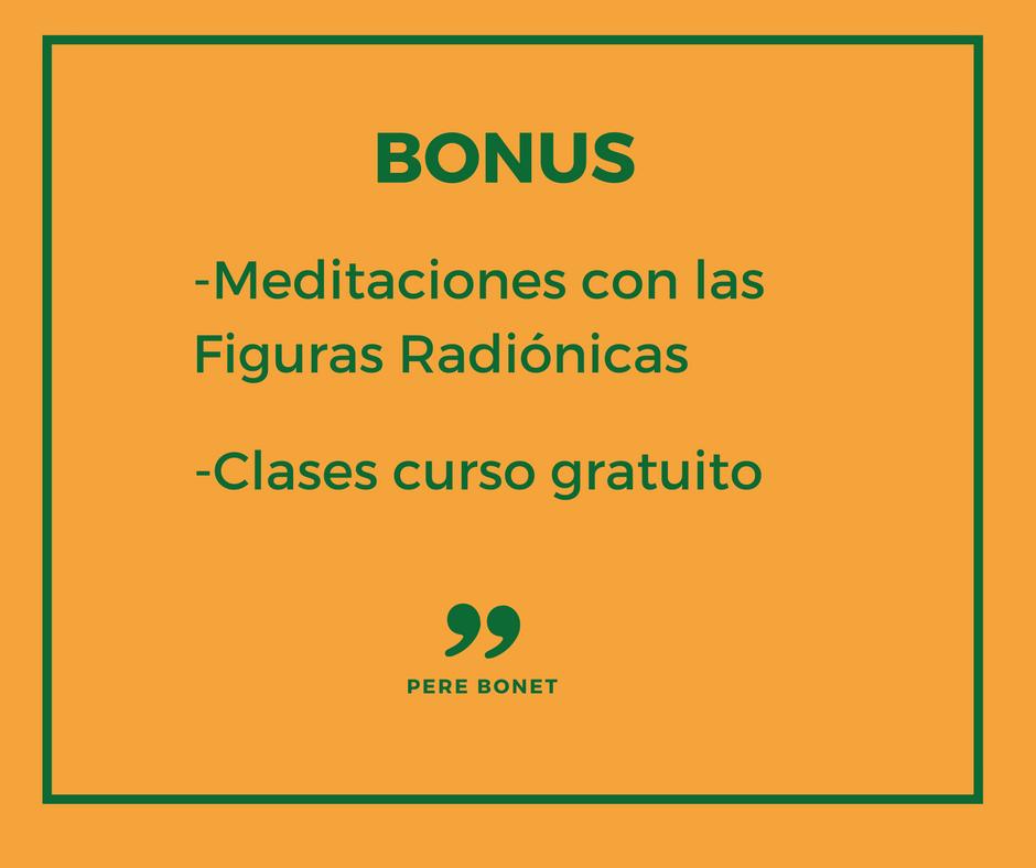 Bonus (2).png