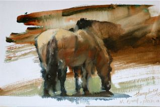 Fjord pony. 9x12 oil on canvas. 10 min. sketch