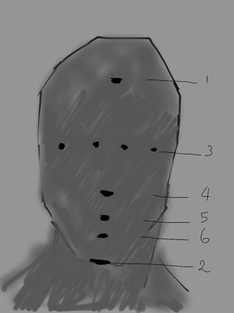 Added shadow shape and eliminated center measuring mark. Placed (a) brow landmark; (b) eye landmarks; (c) bottom nose landmark; (d) lip pusher landmark; (e) dental arch landmark (f) chin bottom landmark