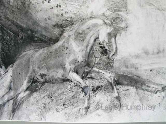 "THE WHITE HORSE 18"" x 24"" - charcoal on board"