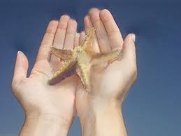 starfish-in-hands2.jpg