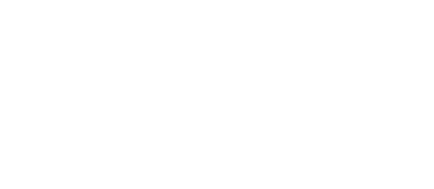 Global Health Sim