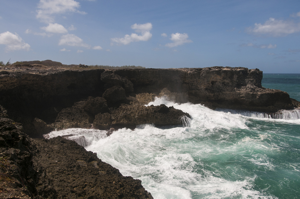 Barbados16-94.jpg