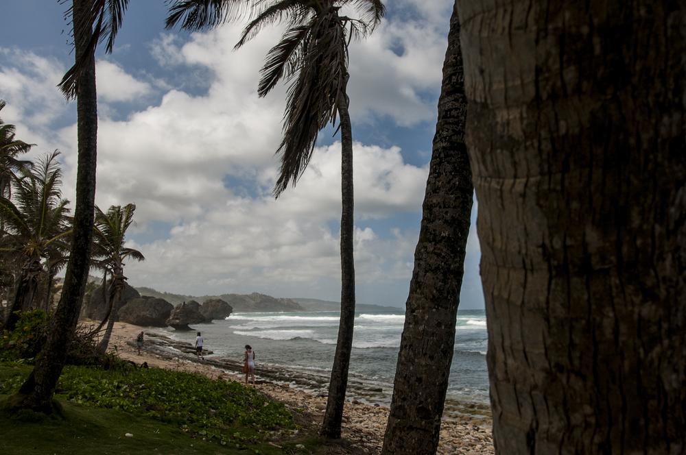 Barbados16-102.jpg