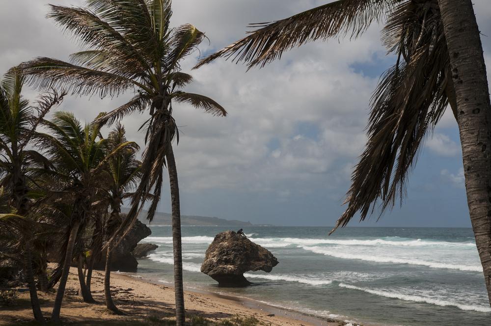 Barbados16-107.jpg