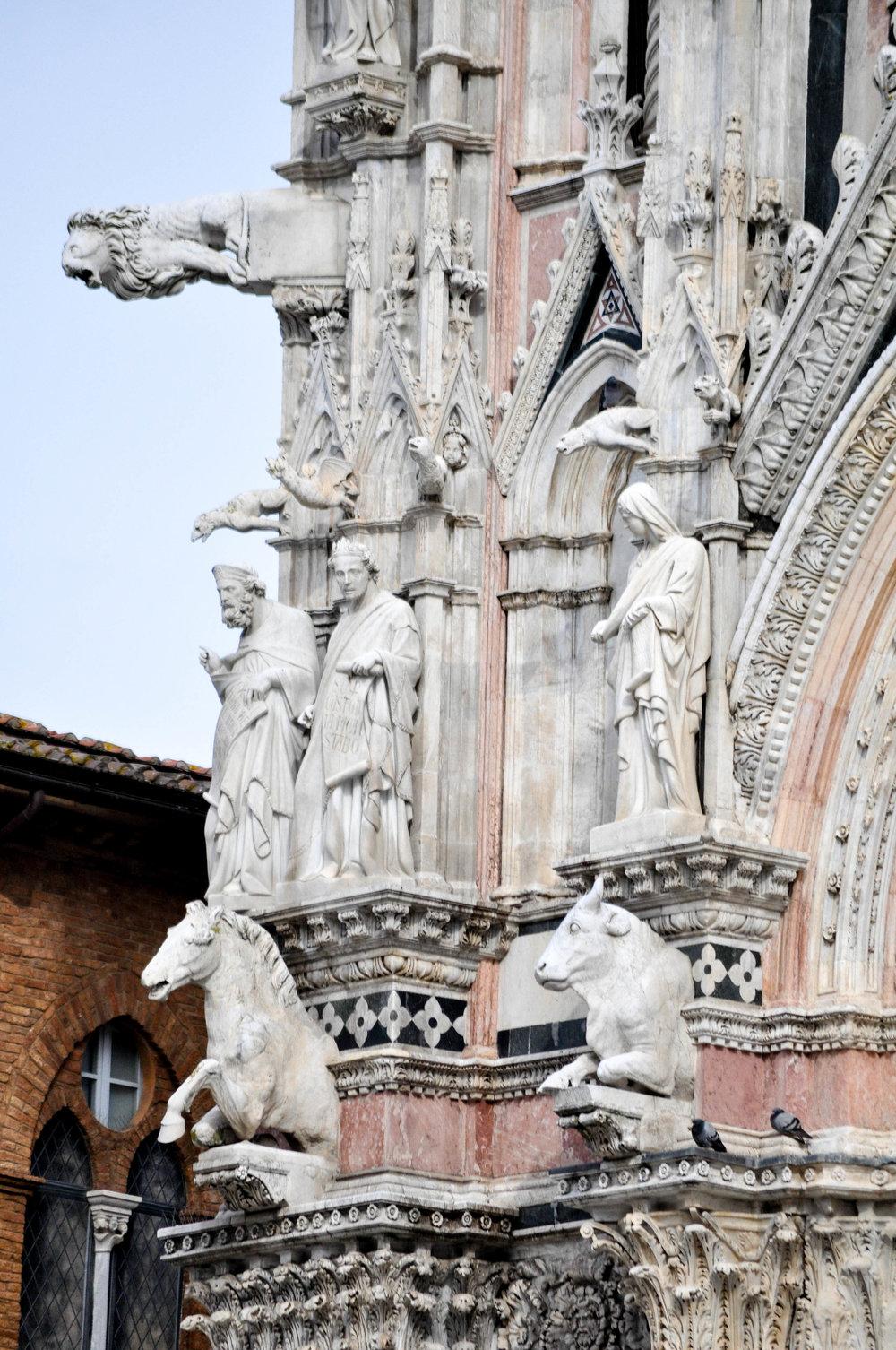 Siena-18.jpg