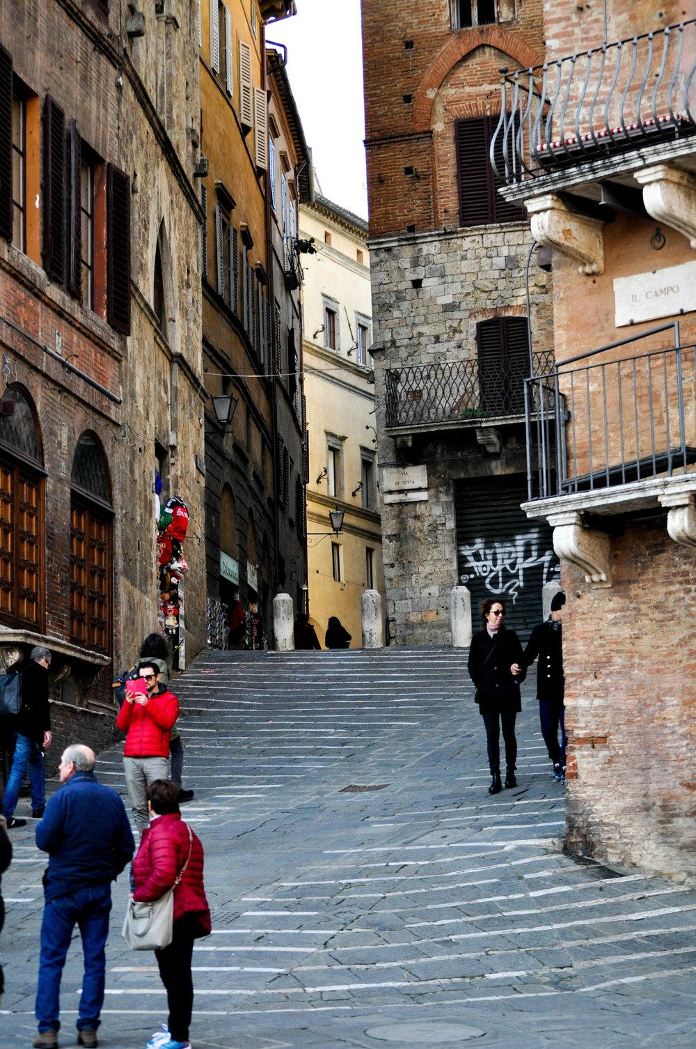 Siena-22.jpg