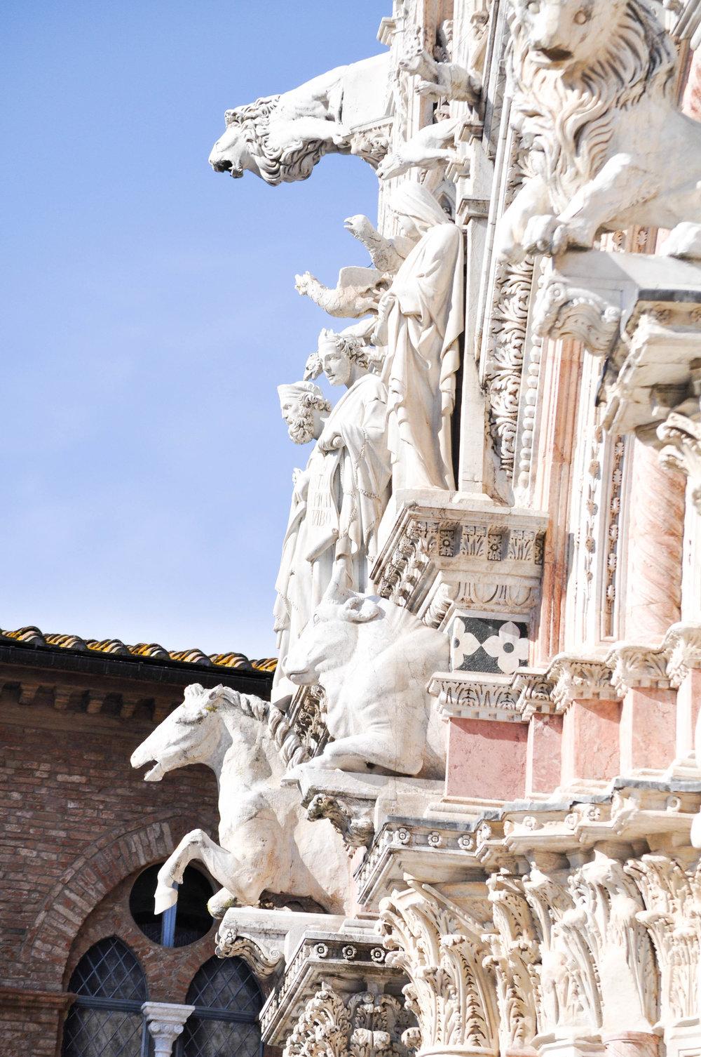 Siena-78.jpg