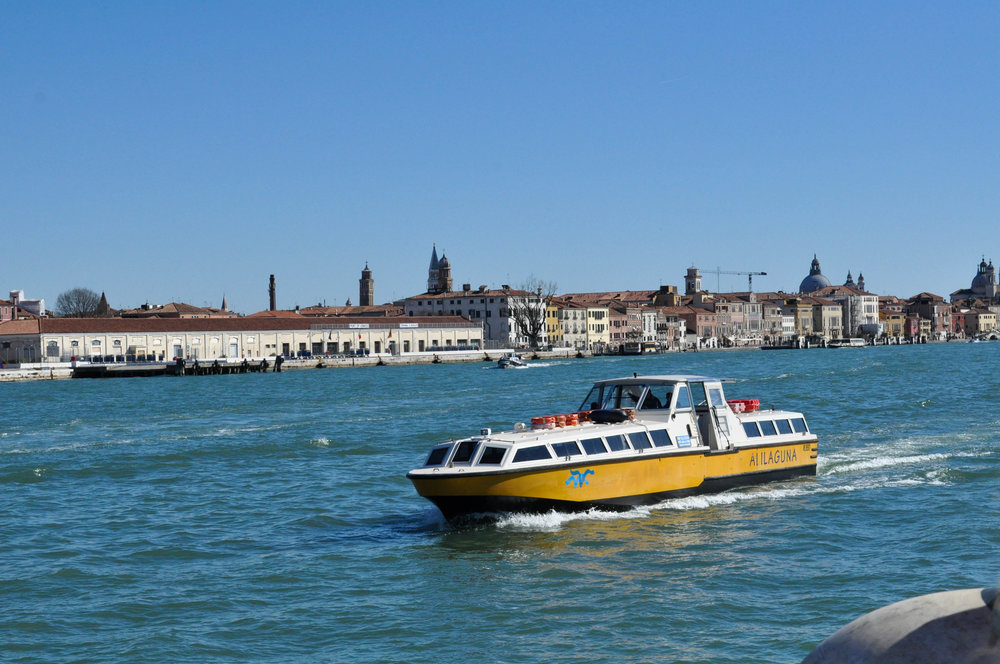 Venice Web-7.jpg