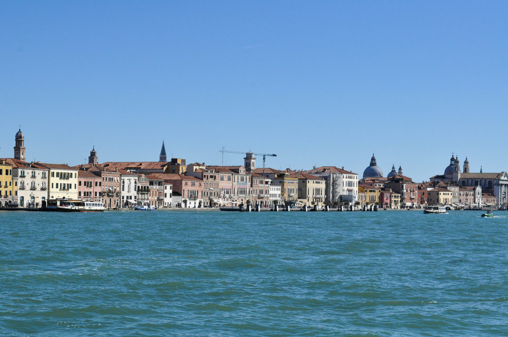 Venice Web-8.jpg