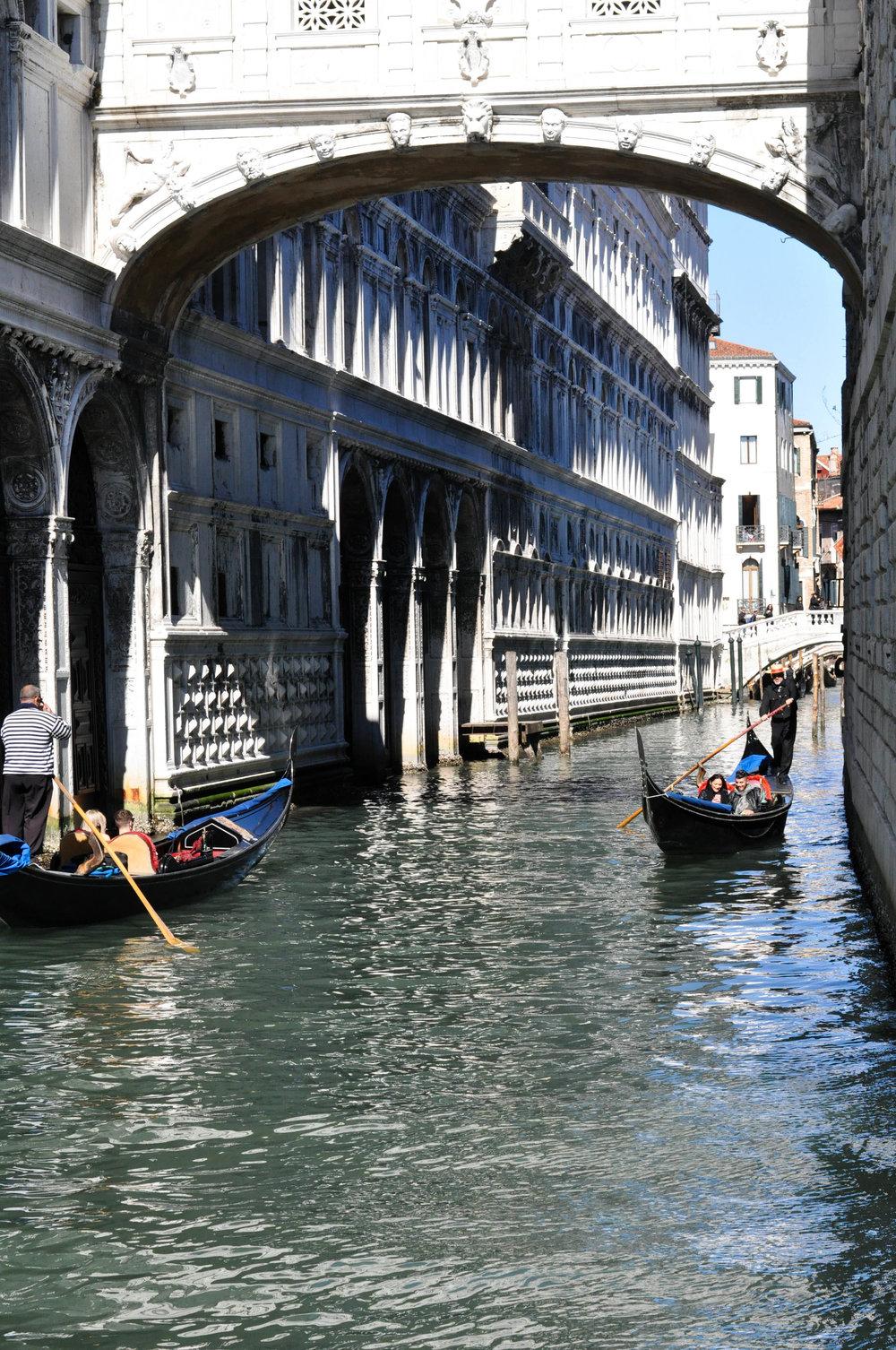 Venice Web-19.jpg