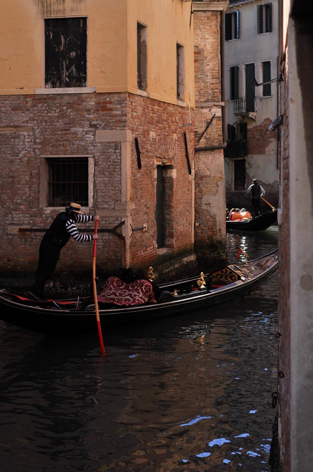 Venice Web-67.jpg