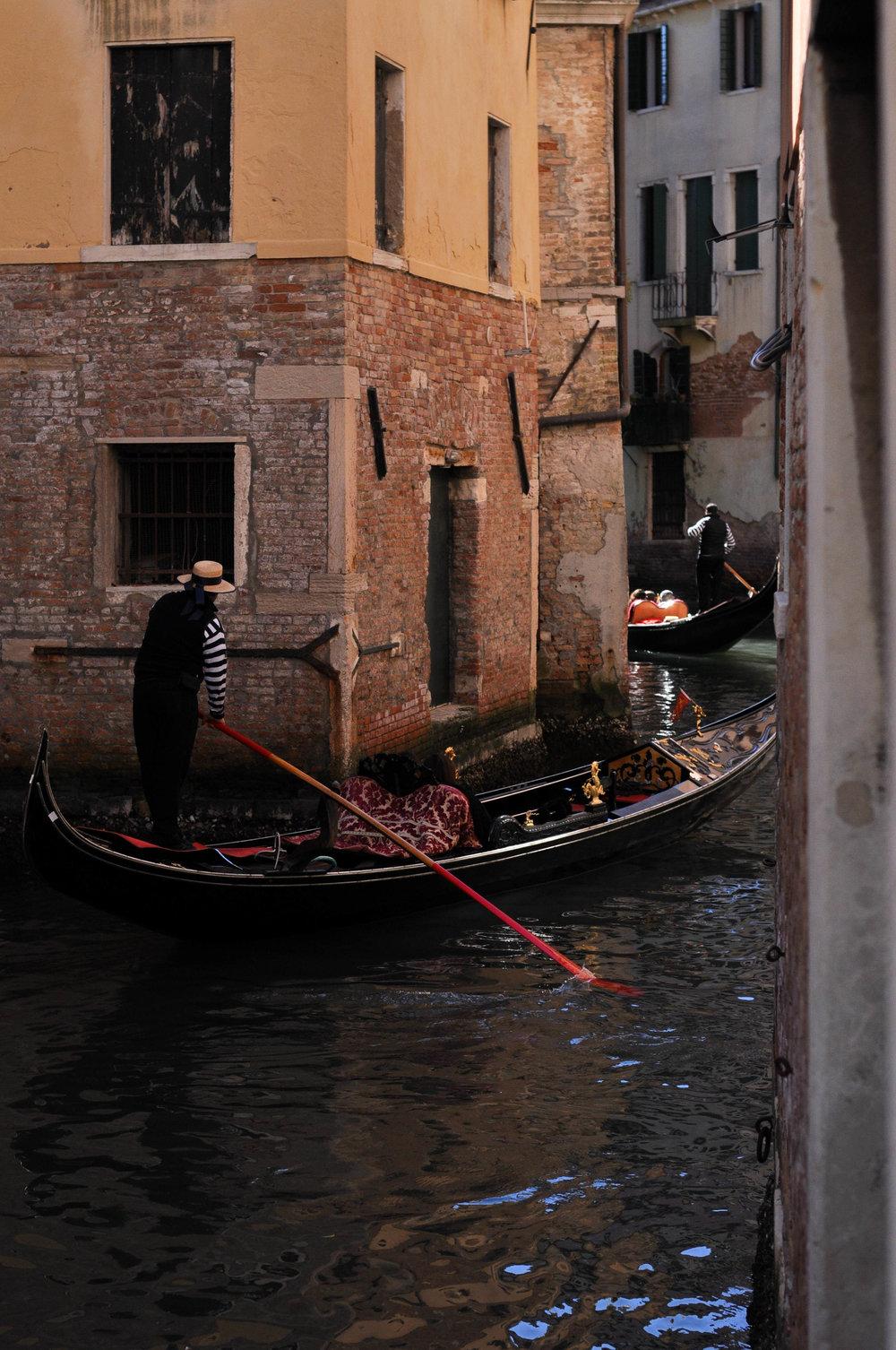 Venice Web-68.jpg