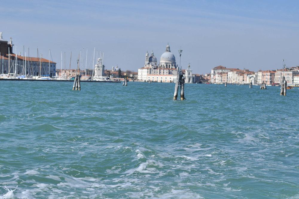 Venice Web-178.jpg