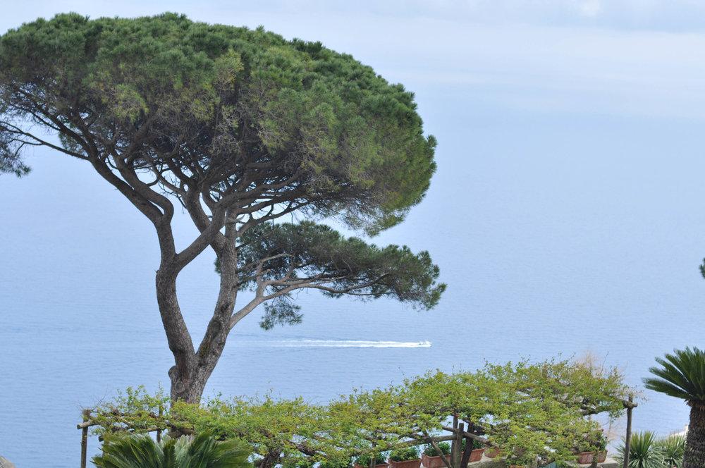 AmalfiCapriPompeii-151.jpg