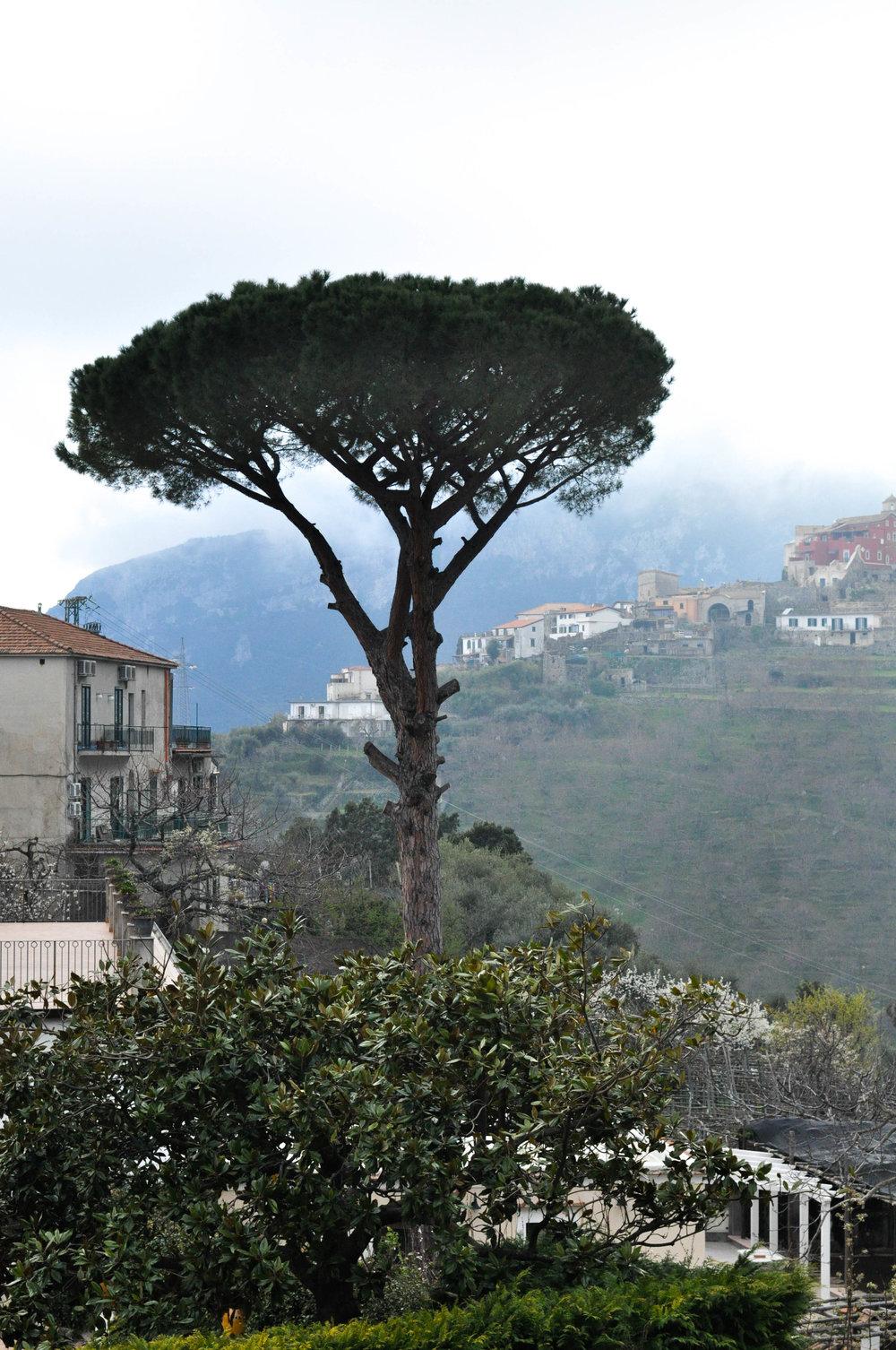 AmalfiCapriPompeii-181.jpg