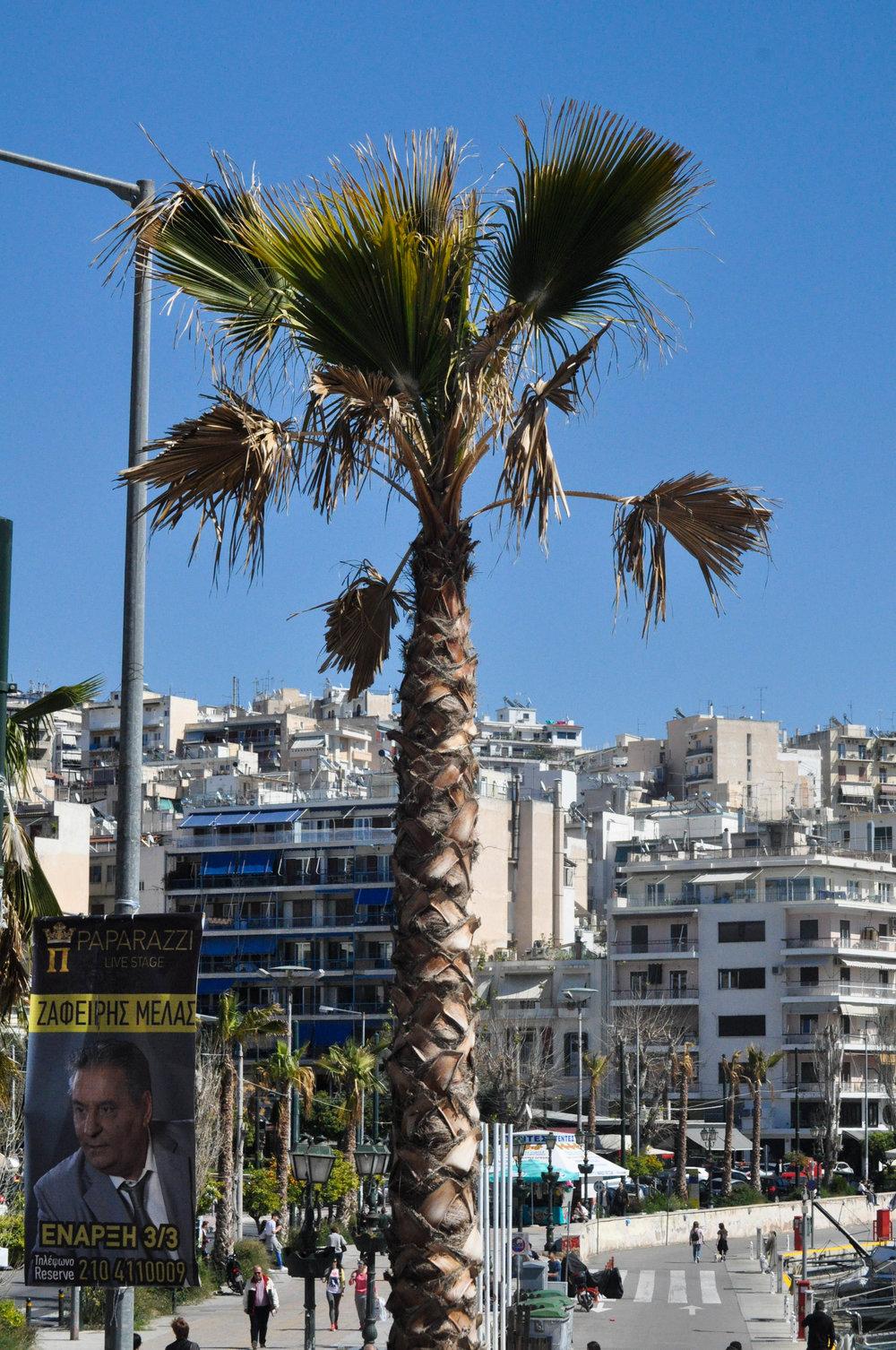 Greece1-125.jpg