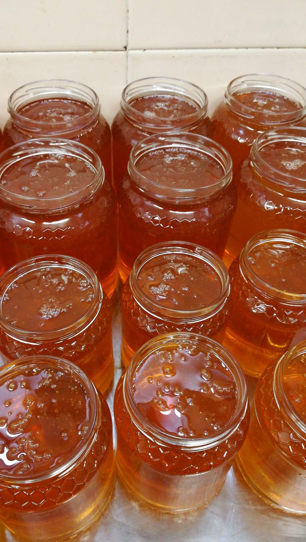 Nel frattempo del buon miele e' stato invasettato