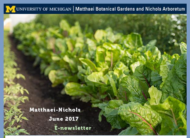 2016 Scholars Citralina Haruo and Jena Brooker in the Matthaei Botanical Gardens June Newsletter.